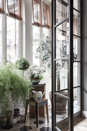 NONAGON-style-n9s-steel-frame-glass-partition-Crittall-window-plant-garden-conservatory-outdoor-indoor-industrial-modern-plants-blinds-flower